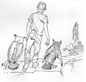 From Farley Mowat's 'Owls in the Family' frontispiece; illustration by Robert Frankenberg.