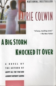 a big storm knocked it over laurie colwin 001