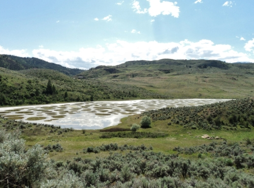 "And the scenery was pretty incredible, too. Here's the locally famous ""Spotted Lake"" near Osoyoos, B.C. (just north of the United States border). Crystalline salt pans in perfectly rounbd formation; a sacred First Nations site as well as an interesting natural phenomenon."