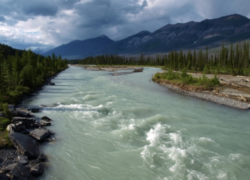 Vermillion River, Kootenay National Park, B.C.