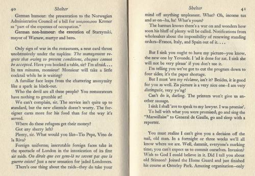 shelter-marguerite-steen-excerpt